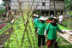 Perempuan Tani dan Nelayan Pangkep Mengikuti Pelatihan Adaptasi Perubahan Iklim (Do. Oxfam)