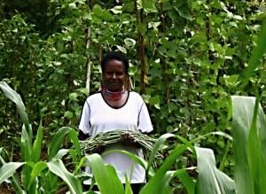 Perempuan Papua memanen hasil kebun yang dibangun secara swadaya (Dok. Villagerspost.com)