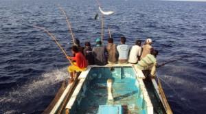 Kegiatan nelayan Flores menangkap ikan (dok. kiara.or.id)