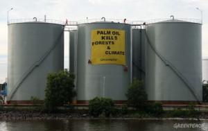Spanduk yang dibentangkan aktivis Greenpeace menentang perusakan hutan oleh perusahaan sawit (dok. Greenpeace)