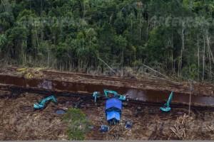 Penghancuran lahan gambut untuk produksi pulp and paper (Dok. Greenpeace)