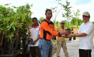 Ir. Januminro menyerahkan bibit tanaman untuk ditanami di lahan gambut (dok. jumpunpambelom.blogspot.com)