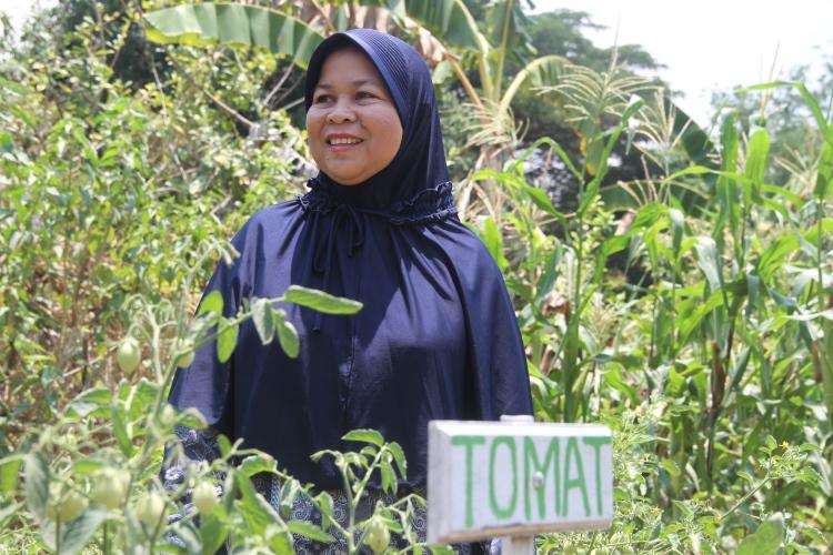 Kebun sayur organik yang dikembangkan Sitti Rahmah, seorang petani maju hasil binaan program RCL (dok. oxfam/Irwan Firdaus)