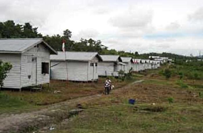 Salah satu kawasan transigrasi. Kementerian Desa PDTT kembali bangkitkan transmigrasi untuk membangun kawasan tertinggal (dok. tatakelolahutan.net)
