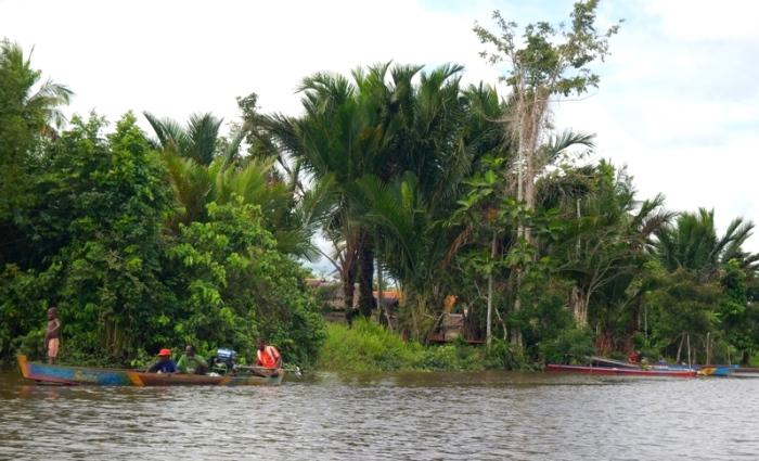 Warga Asmat memanfaatkan sungai untuk transportasi. WWF mengembangkan program adaptasi dan mitigasi perubahan iklim berbasis kearifan lokal di Asmat (dok. wwf.or.id/papua program)