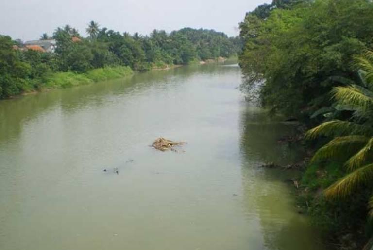 DAS Sungai Ciujung, Serang, Banten. Pemerintah harus tegas pada pencemar sungai Ciujung (dok. walhi)