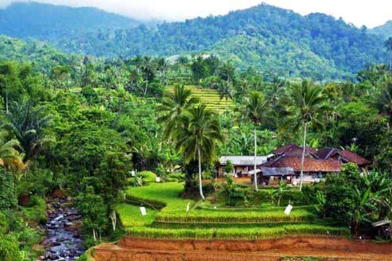 Dana desa harus digunakan untuk membangun desa. Cegah jangan sampai disedot ke kota lewat bank (dok. djpk.kemenkeu.go.id)