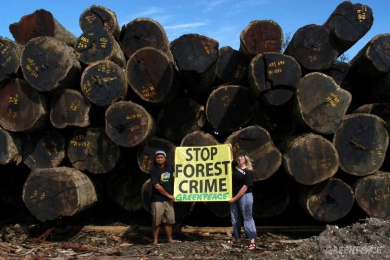 Aksi aktivis Greenpeace menyetop kerusakan hutan. Upaya penyelematan hutan perlu ada keterbukaan data kehutanan (dok. greenpeace)