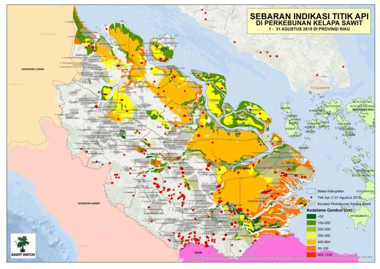 Peta sebaran titik api di Riau. Perkebunan sawit masih menjadi aktor utama bencana asap (dok. sawit watch)