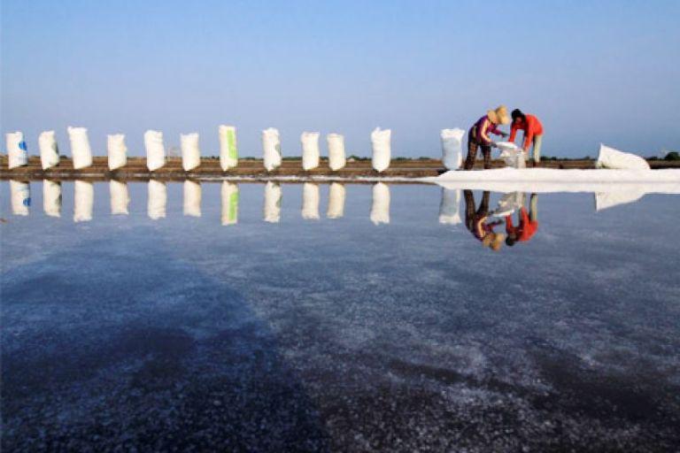 Petani garam memanen hasil tambaknya. Menko Maritim dan Sumber Daya Rizal Ramli mengambil lima langkah berangus begal garam yang rugikan petani garam (dok. bumn.go.id)