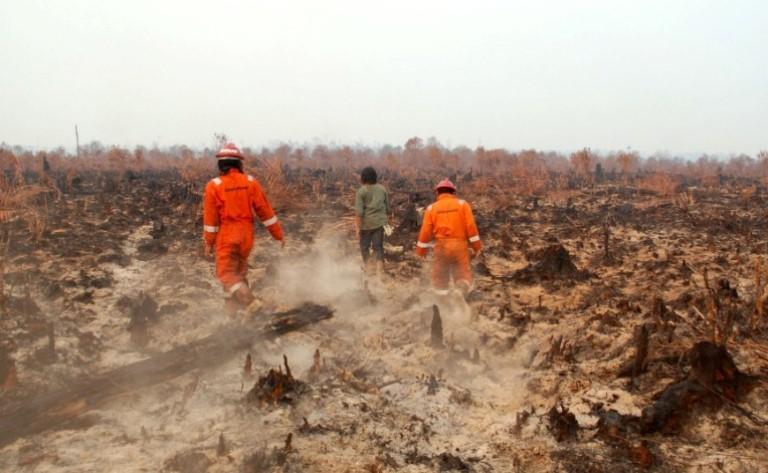 Upaya pemadaman kebakaran hutan di Riau (dok. greenpeace)
