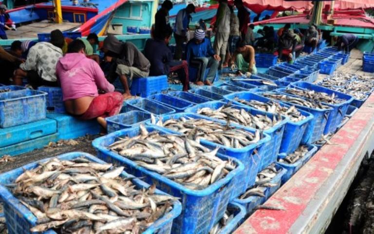 Ikan hasil tangkapan nelayan (dok. kkp.go.id)