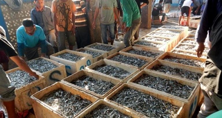 Tempat pelelangan ikan. Susi tunjuk dua BUMN jalankan fungsi Bulog Perikanan (dok. kemendagri.go.id)
