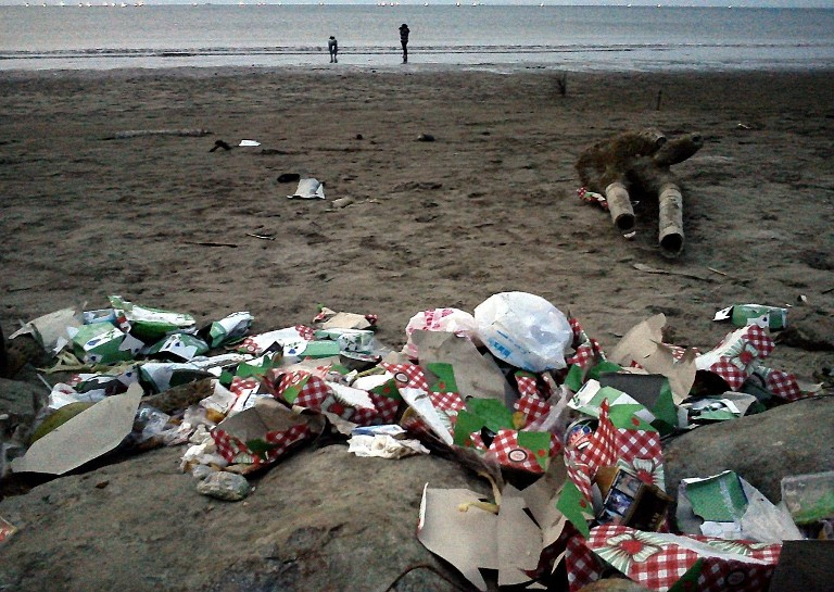Tumpukan sampah di pinggir pantai. KKP akan memberikan sanksi bagi para pembuang sampah di laut (dok. wwf.or.id)