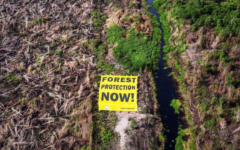 Aktivis Greenpeace menyerukan penghentian pengrusakan hutan. (dok. greenpeace)