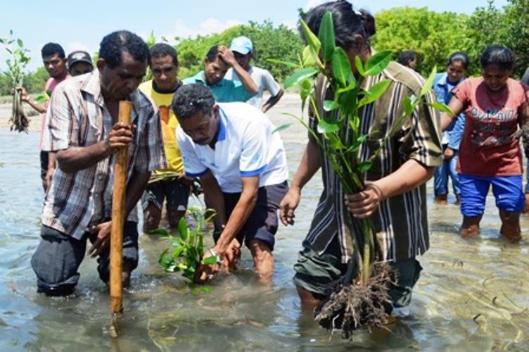 Perempuan nelayan dan para nelayan lelaki di Lembata, NTT berjuang bahu membahu perbaiki kawasan mangrove yang rusak (dok. kiara)