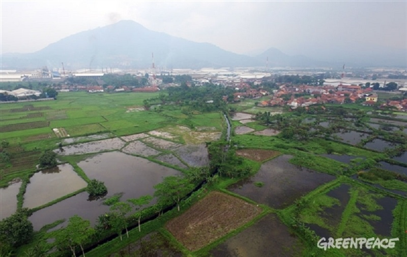 Pencemaran Sungai Cikijing akibat pencemaran dari limbah industri mencapai ratusan miliar rupiah untuk aspek kesehatan warga saja (dok. greenpeace.org)