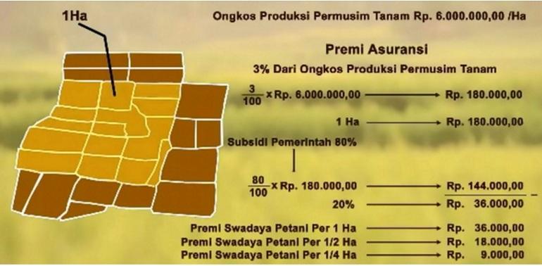 Skema asuransi pertanian (dok. pertanian.go.id)