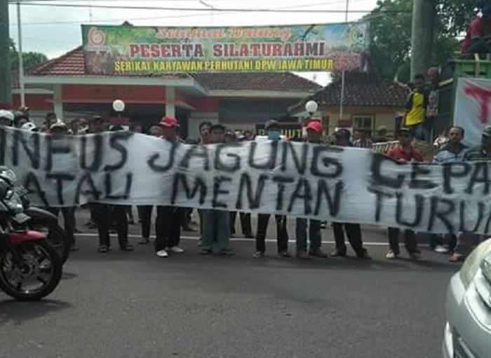 Aksi demonstrasi peternak unggas Blitar menuntut penurunan harga jagung (dok. istimewa)