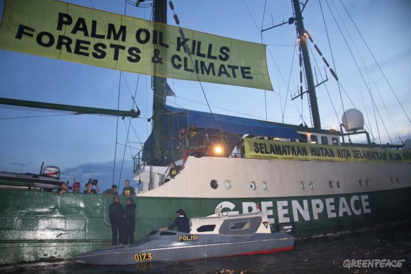 Kapal Greenpeace Rainbow Warrior mengkampanyekan pengakhiran sawit merusak (dok. greenpeace)