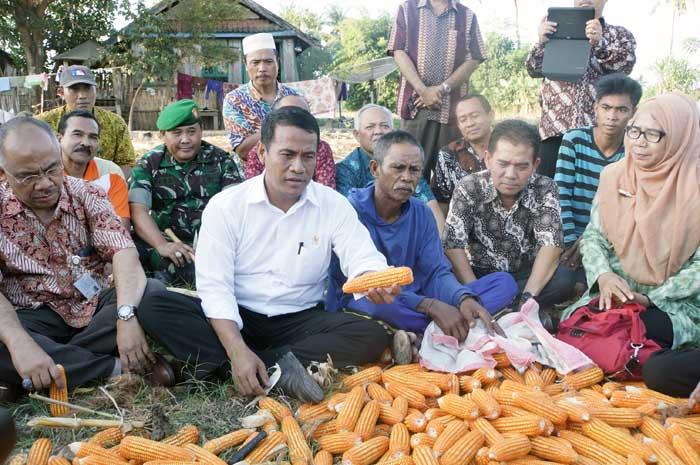 Menteri Pertanian Amran Sulaiman usai acara panen jagung. DPR sayangkan Bulog beli jagung impor ilegal (dok. distanak.bantenprov.go.id)