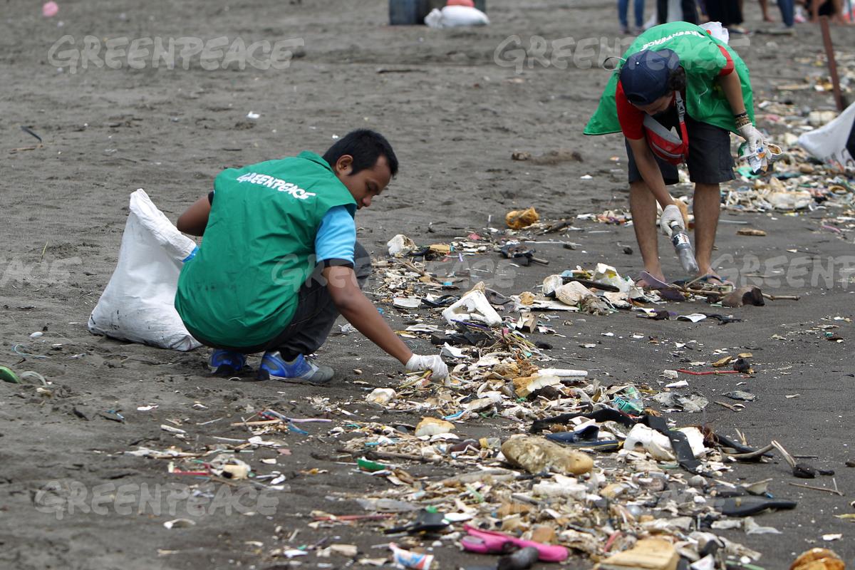 Aktivis Greenpeace membersihkan sampah di kawasan Teluk Naga (dok. greenpeace)