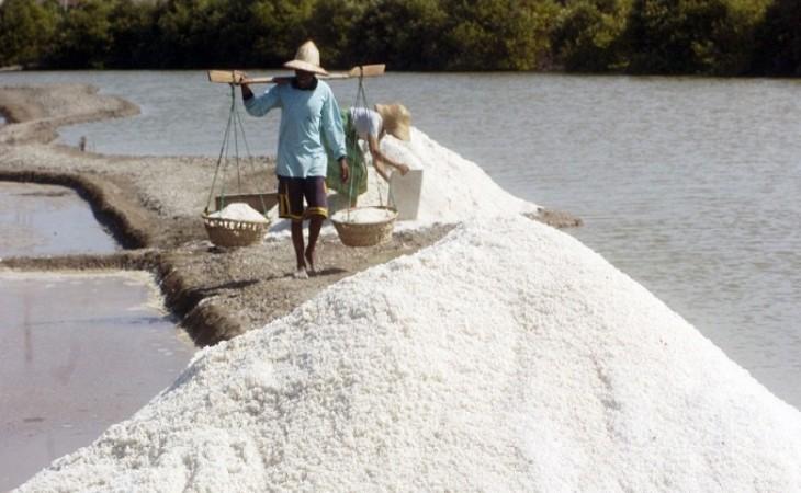 Petambak garam mengangkut hasil panen (dok. kkp.go.id)