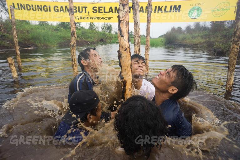 Aktivis Greenpeace, CIMTROP dan Save Borneo memancangkan tonggak membangun dam untuk membendung kanal gambut (dok. greenpeace)