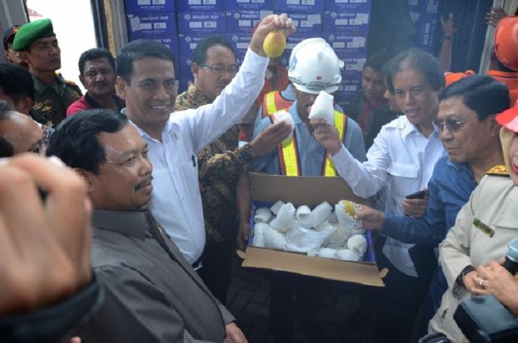 Menteri Pertanian Amran Sulaiman menunjukkan buah impor ilegal yang diduga membawa penyakit tanaman (dok. dpr.go id)