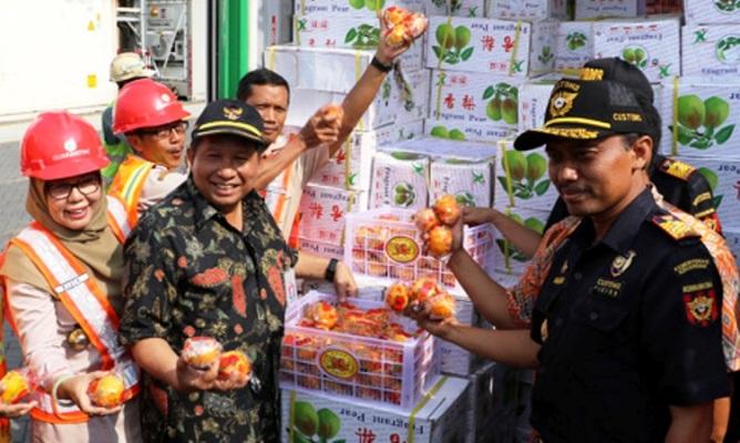 Petugas karantina pertanian mencegah masuknya buah ilegal (dok. pertanian.go.id)