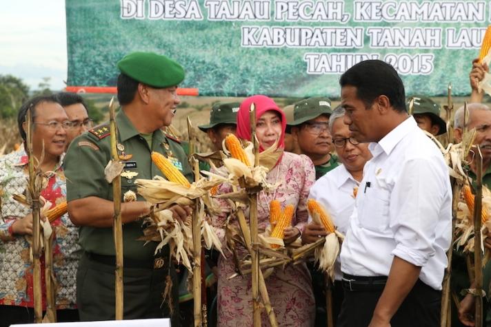 Menteri Pertanian Amran Sulaiman saat panen jagung di Kalimantan Selatan, tahun lalu (dok. pertanian.go.id)