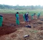 Siswa-siswi SMKN 4 Lewa, Sumba Timur NTT, belajar pertanian organik (dok. rahmat adinata)