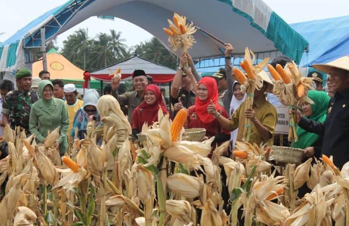 Acara panen jagung di Sulawesi Selatan (dok. sulsel.kemenag.go.id)