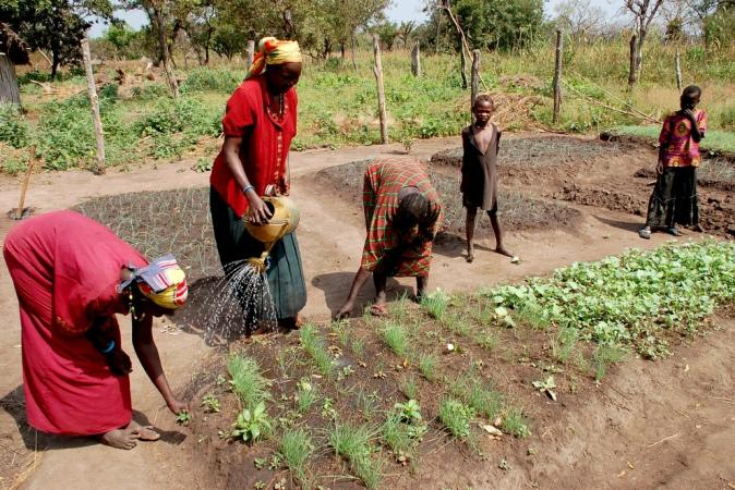 Petani miskin di Sudan. Banyak negara dirugikan oleh penghindaran pajak yang dilakukan perusahaan multinasional dan individu kaya dunia (dok. oxfamblogs.org)