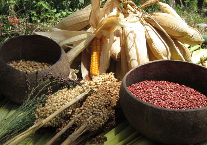 Pangan lokal pengganti beras. (dok. jabarprov.go.id)