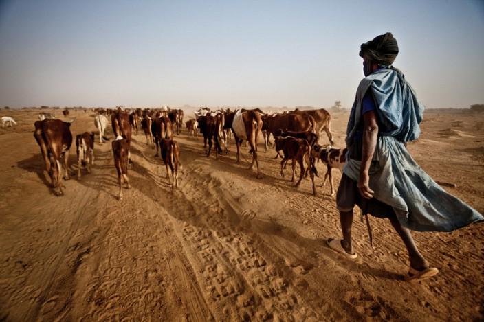 Kekeringan hebat akibat perubahan iklim (dok. oxfam.org.au)