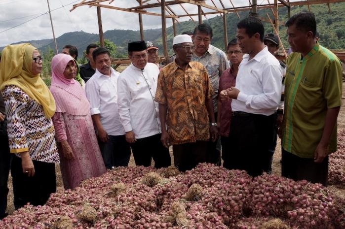Menteri Pertanian Amran Sulaiman meninjau produksi bawang merah di Bima, Nusa Tenggara Barat (dok. pertanian.go.id)