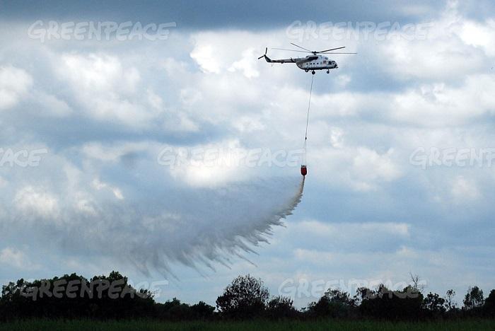 Helikopter BNPB melakukan water bombing di areal lahan gambut yang terjadi di Desa Pangkalan Terap, Kecamatan Teluk Meranti, Kabupaten Pelalawan, Provinsi Riau, Indonesia, Kamis (16/6). (dok. greenpeace/rony muharrman)