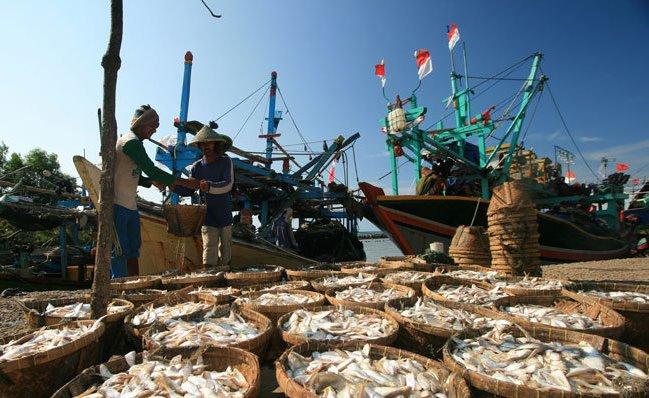 Nelayan mengeringkan ikan sisa hasil tangkapan (dok. kkp.go.id)