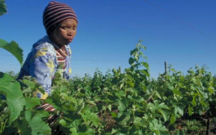 Petani di Afrika. Indonesia sepakati kerjasama pertanian dengan Guinea (dok. oxfam.org)