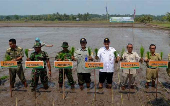 Prosesi awal musim tanam padi di Kalimantan Timur (dok. pertanian.go.id)