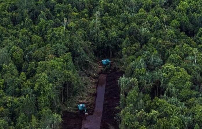 Pembangunan kanal di area lahan gambut oleh PT RAPP di Pulau Padang, Bengkalis, Riau (greenpeace/ulet ifansasti)