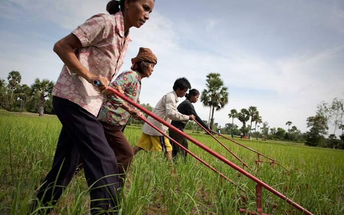 Peningkatan kapasitas petani, sebagai upaya memerangi kemiskinan (dok. oxfam)