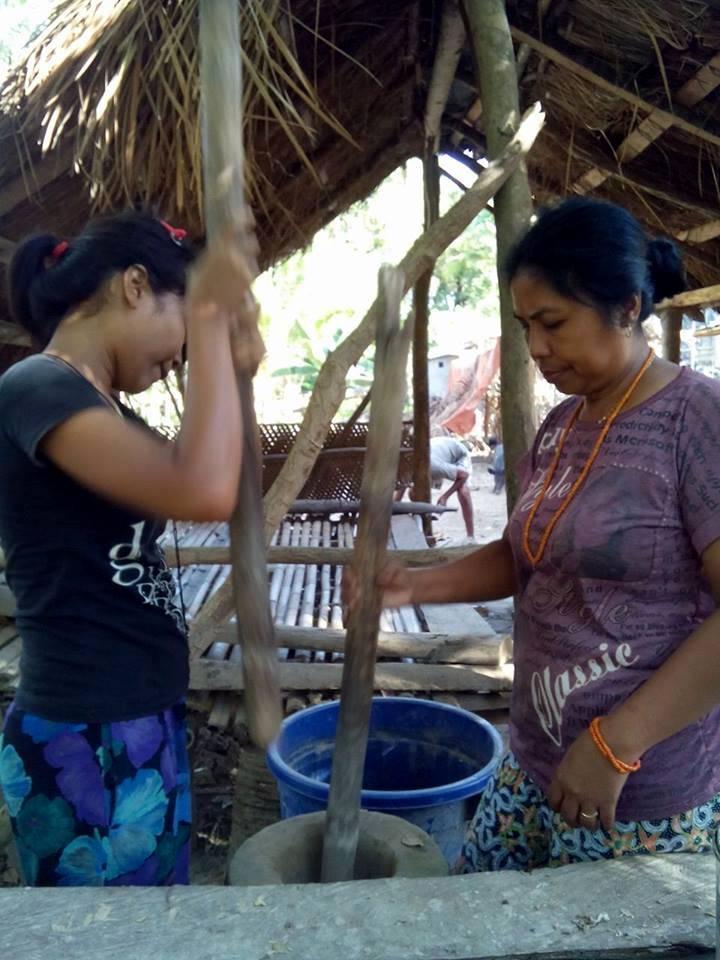 Menumbuk cangkang dan daging keong mas menjadi tepung untuk pakan ternak (dok. villagerspost.com/rahmat adinata)