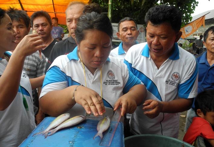 Belajar mengukur dan menimbang berat ikan (dok. villagerspost.com/eko handoyo)