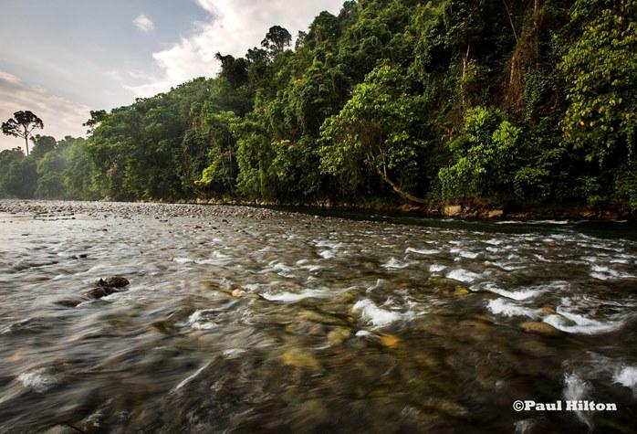 Kawasan Ekosistem Leuser memberikan layanan lingkungan termasuk air bersih bagi warga Aceh (dok. GeRAM/Paul Hilton)