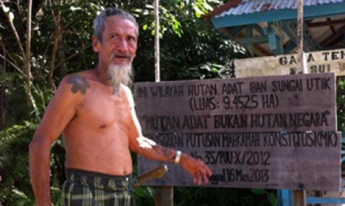 Hutan adat masyarakat adat dayak Iban (dok. forest watch indonesia)