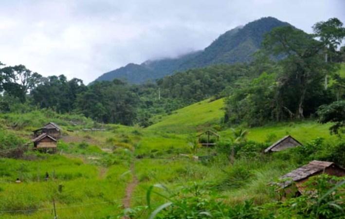Hutan adat Taa Wana di Sulawesi Selatan, dijadikan model pengelolaan hutan adat secara lestari (dok. mahkamah konstitusi)