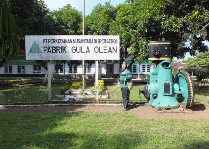 Pabrik gula Olean, salah satu yan akan ditutuppemerintah (dok. kabupaten situbondo)