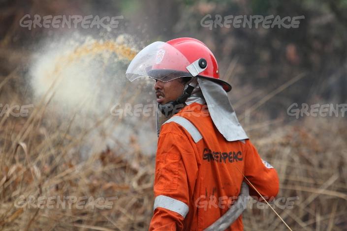 Tim pencegah kebakaran hutan Greenpeace beraksi memadamkan api di Riau (dok. greenpeace)